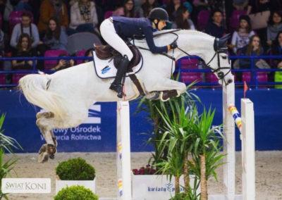 Charlene, 2008 - 16.2H Holsteiner mare